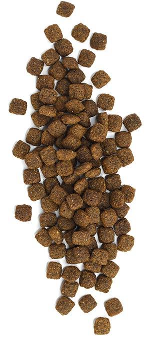 Westward<sup>™</sup> - Beef Formula Dog Food